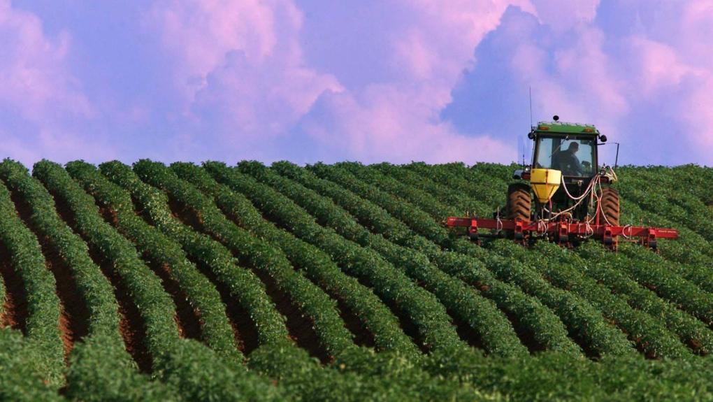 Como o Marketing Digital está revolucionando o Agronegócio no Brasil